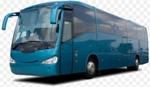 Shuttle Bus Transfers